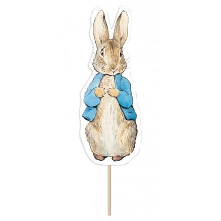 Peter Rabbit Card Cake Topper
