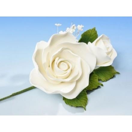 Rose Spray White