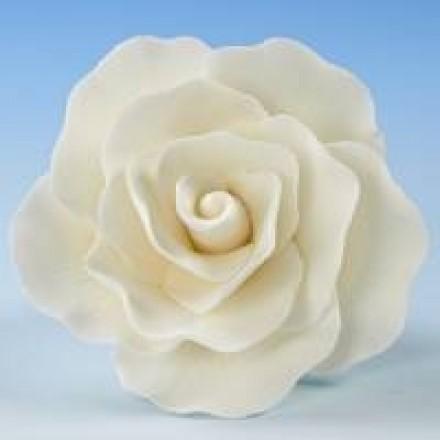 Vintage Roses - White