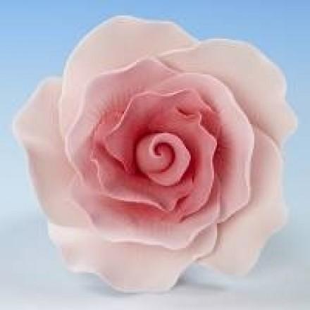 Vintage Roses - Pink
