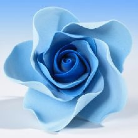 Open Roses - Blue
