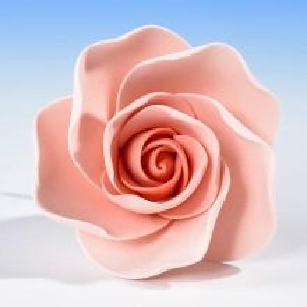 Open Roses - Peach