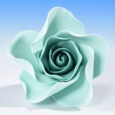 Open Roses - Aqua/Teal
